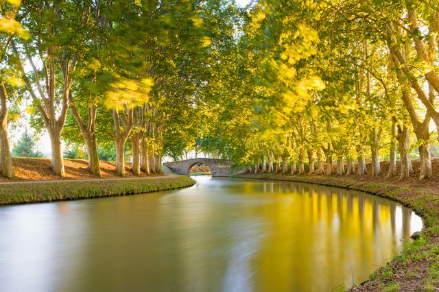 Photo : Canal du midi