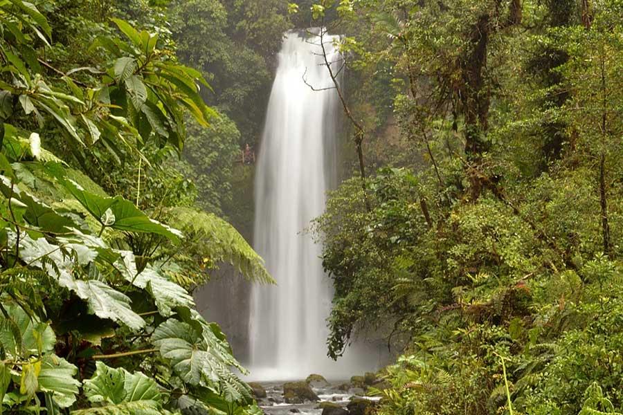 Cascades Paz Waterfall Gardens