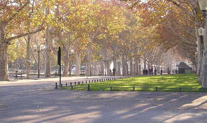 Esplanade Charles De Gaule Montpellier