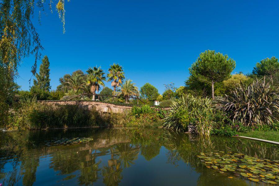 Jardin De L Ile Verte
