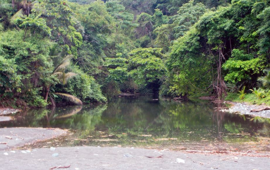 Parc National Du Corcovado