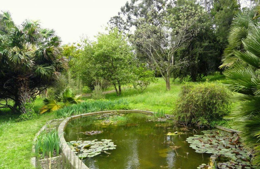 Le Jardin Botanique De La Villa Thuret © Wikipedia