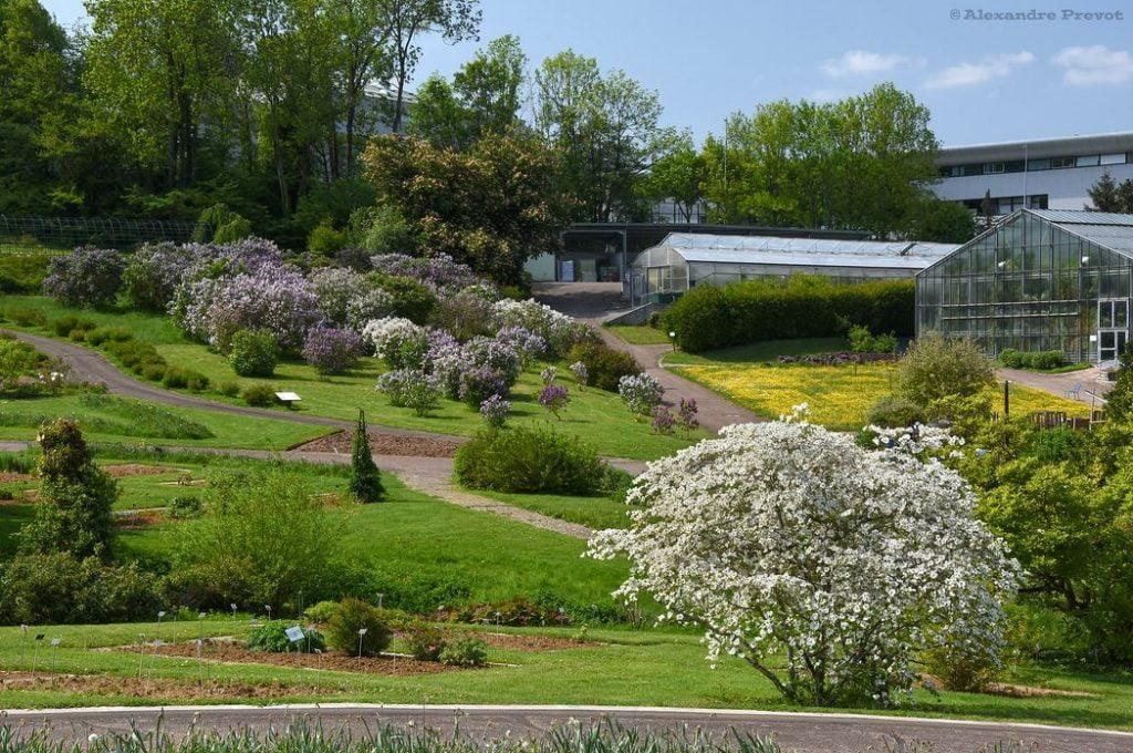 Jardin Botanique Jean Marie Pelt © Flickr Alexandre Prevot