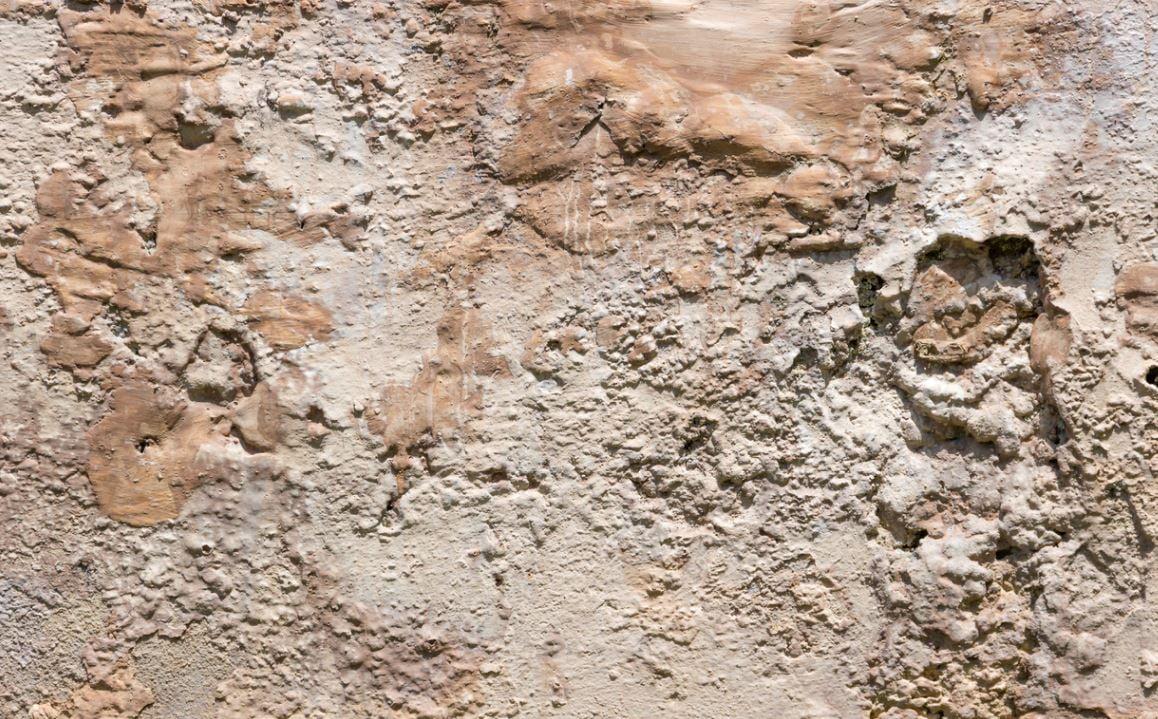 Salpetre Sur Les Murs